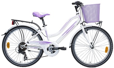 "Jalgratas Lombardo Panerea CL46VD, 24"""