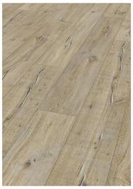 "Laminuotos medienos plaušų grindys ""Kronotex"" D4159"