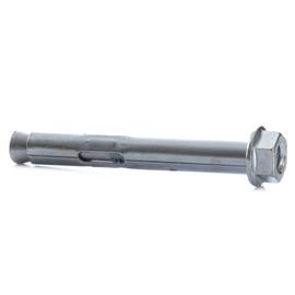 Inkarinis varžtas su metaliniu kaiščiu, 10x77 mm, 5vnt.