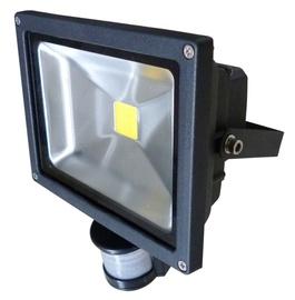 Prožektors Vagner SDH LED 30W 4000K IP65, ar sensoru