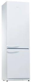 Šaldytuvas Snaigė RF39SM-P100223