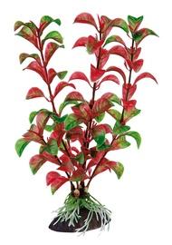 """Dirbtinis akvariumo augalas """"Ferplast"""" Rotala, 20 cm"""