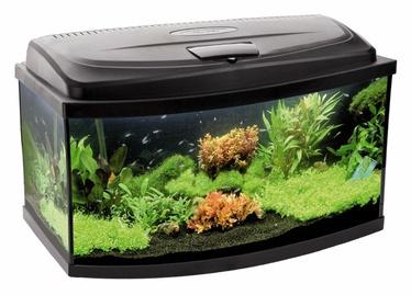 "Akvariumas su įranga ""Aquael"" Classic, lenktas, 40 l, 50 x 30 x 30 cm"