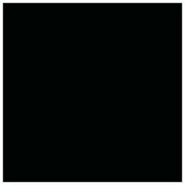 """Poliruotos akmens masės plytelės """"CH"""" 6005, juodos"""