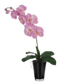 Dirbtinė gėlė orchidėja, 65 cm