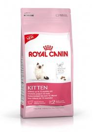 """NAMINIŲ GYVŪNŲ ĖDALAS """"KITTEN"""" (36, 2 KG) (ROYAL CANIN)"""