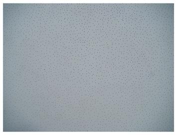 Kabamųjų lubų plokštės P01