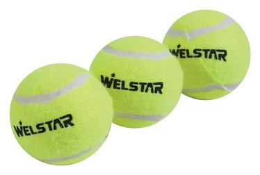 Lauko teniso kamuoliukų komplektas Welstar W118TB, 3 vnt