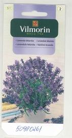 Vaistinių levandų sėklos Vilmorin