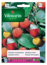Hariliku maasikapuu seemned