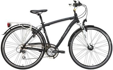 "Jalgratas meeste Lombardo Milano, 28"""