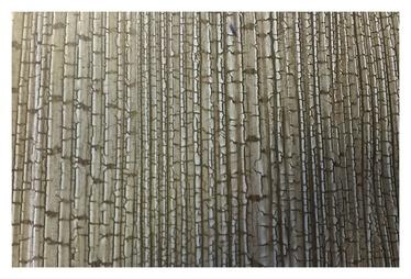 Laminuotos medienos plaušų dailylentės HDF 1106-1