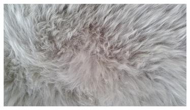"Avies kailis ""Futura"" Sheepskin Rug; 0,9 x 0,6 m"