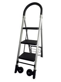 Krovininis vežimėlis FW-70B, su kopėčiomis