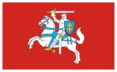 Istorinė vėliava, stiebinė 1 x 1,7 m