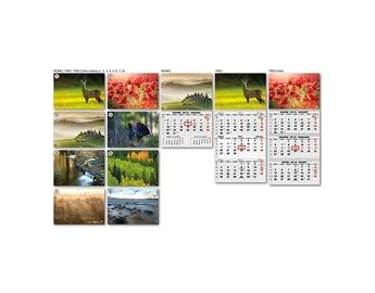 Sieninis kalendorius Gamta