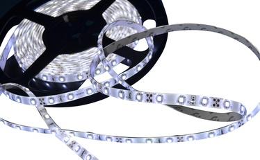 Šviesos diodų LED hermetinė juosta Vagner SDH 9,6W 3528 balta