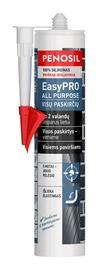 Silikoninis hermetikas Easypro, visų paskirčių, bespalvis, 310 ml