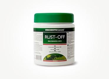 Roostet peatav krunt Rust-Off, 0.25l
