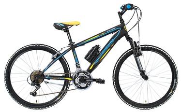 """Jalgratas Lombardo Trophea, 24"""""""