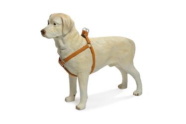 Traksid koertele MacLeather pruun