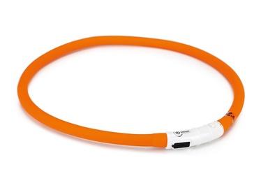 "Šviečiantis LED pavadėlis su USB ""Beeztees"""