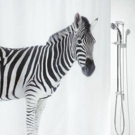 Dušikardin Spirella Zebra, 180x200cm, tekstiil