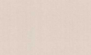 Tapetes Rasch Maximum IX 901900, 1,06x10m