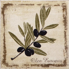 Flīzes dekors Kerama Marazzi Provence Olive 9,9x9,9cm