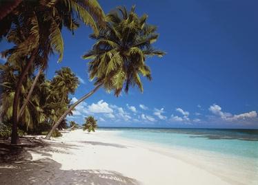 Fototapeet 8-240 Maldives 368x254cm