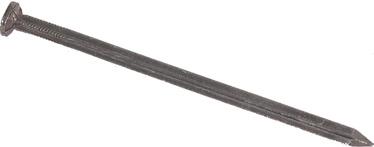 Nael Prof, 1,6x30mm, teras ZN, 100tk