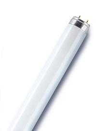 Luminiscējošā spuldze Osram Lumilux 865 18W FLH1