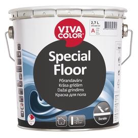 Krāsa grīdām Vivacolor Special Floor A 2,7L