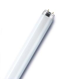 Luminiscējošā spuldze Osram Lumilux 840 18W T8