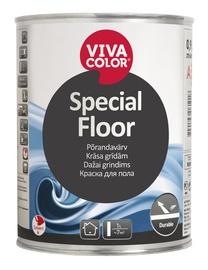 Põrandavärv Special Floor, värvitu (C) 0,9L