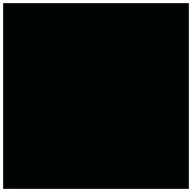 FLĪZES GRES BLACK POL CH6005 60X60