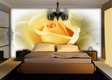 Fototapete ar rozēm, 1.84 m