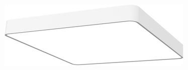 TVIRTINAMASIS ŠVIESTUVAS (SOFT 6997) (NOWODVORSKI)