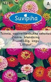 Seemned Pruudisõlg Lilliput, segu 1,5g