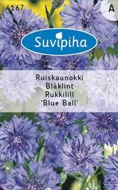 Seemned Rukkilill Blue Ball, sinine 1g
