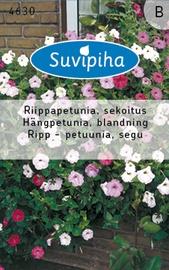 Seemned Petuunia, rippuv, segu, 0,2g