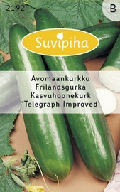 Seemned kasvuhoone kurk Telegraph Improved