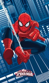 dvielis Spiderman SPIDERMAN 042311