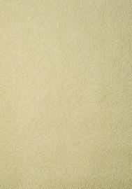 TAPETE FLIZ B87 1000-04 1.06M