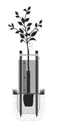 Puu toe- ja kaitsekomplekt