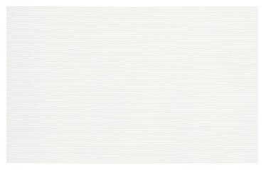 Sienų plytelės Verno White