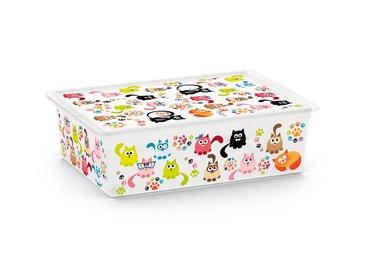KASTE C BOX ANIMALS L 8416000 2233