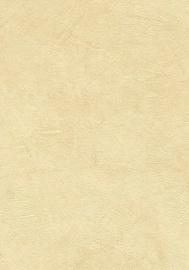 SEINAPANEEL DECOR 44 580X2700 /6,26M2