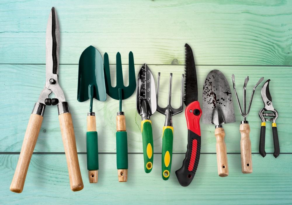 dienos prekybos svarbiausi įrankiai nemokama dvejetainių opcionų prekybos sąskaita