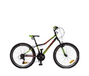 Paauglių dviračiai